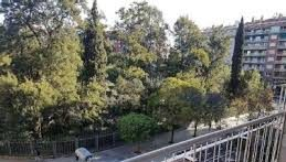 Obra nueva en zona Turó Park